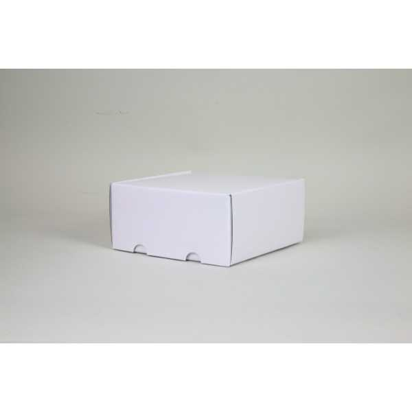 SHIPPING BOX laminated POSTPACK (SUITABLE FOR WONDERBOX AND EVOBOX)