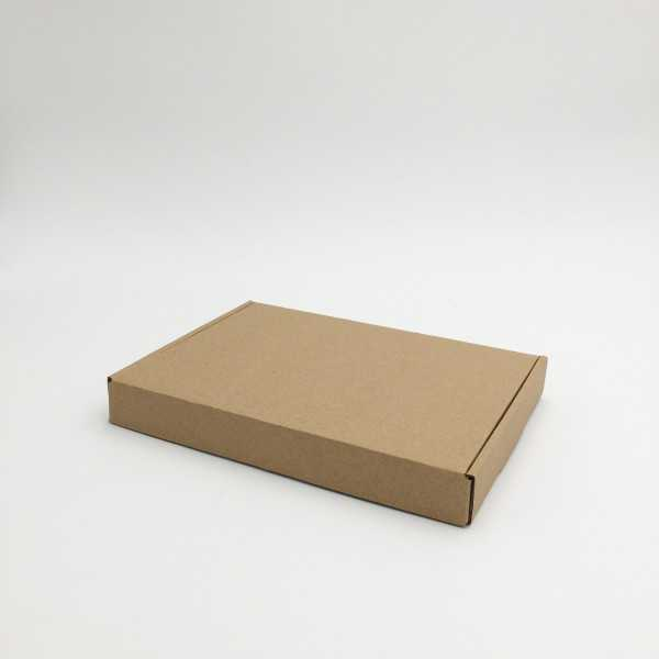 POSTPACK kraft natural (ADAPTADO A HINGBOX)